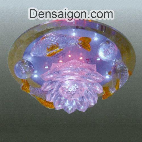 Đèn Áp Trần LED Màu Sắc Rực Rỡ - Densaigon.com